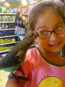 Girl with glasses and parrot Visual Q Eyecare Kids Glasses Melbourne